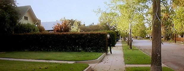 Michael Myers creeps about the neighbourhood in broad day light, hiding behind hedges and clothes hanging on washing-lines.